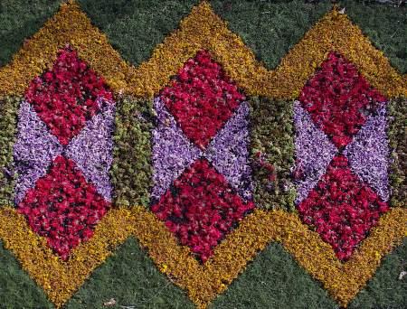 Corpus Christi flower carpet, Mazo, La Palma. Canary Islands