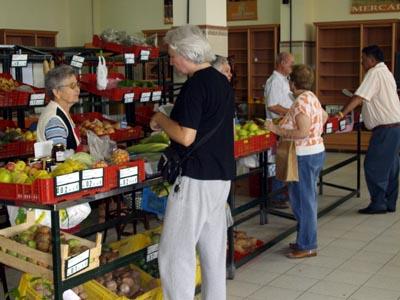 Mazo Farmer's Market